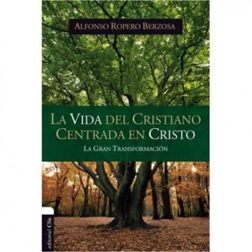 RVR 1960 BIBLIA DE ESTUDIO ARCO IRIS, GRIS PIZARRA/OLIVA